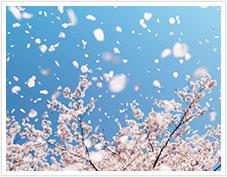 春にできるニキビの原因と対策