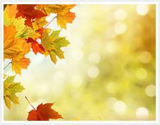 秋にできるニキビの原因と対策